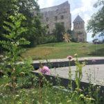 Il castello dalla locanda